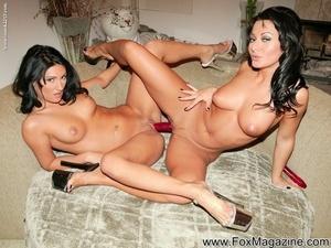 Lesbian sex industry stars Sandra Romain and Persia Decarlo toy twats and assholes